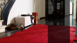 Yakut Kırmızısı Desenli Geniş Karanlık İç Mekanlar